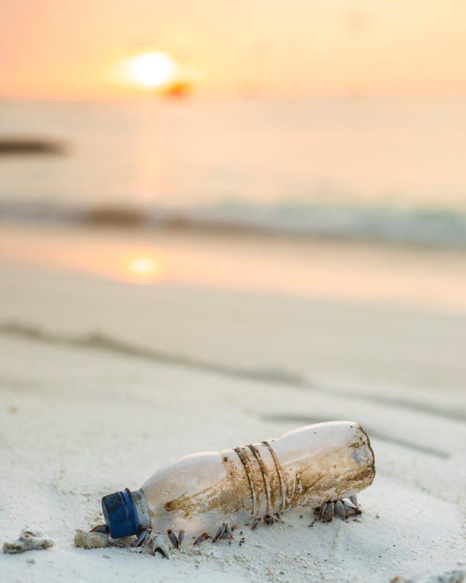Leeaf Juice Skincare - Plastic Free